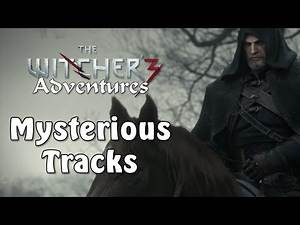 Witcher 3 Adventures   Mysterious Tracks
