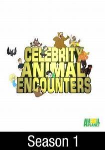 Celebrity Animal Encounters: David Arquette's Petting Zoo Calamity
