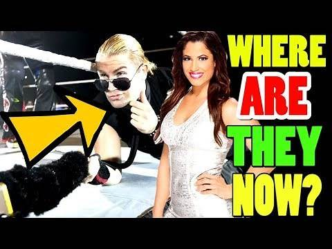 14 WWE Releases In 2019: Where Are They Now?