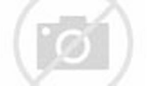 The Undertaker vs Stone Cold Steve Austin WWF Title Match 8/30/98