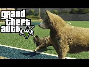 GTA 5 - Play as a Cat/Pig/Mountain Lion & More - How To! (Peyote Location #2) [GTA V Xbox One)