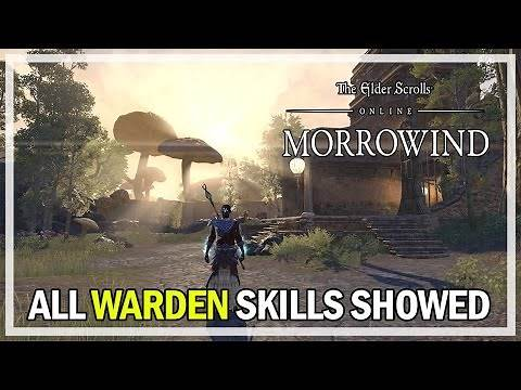 ESO Morrowind - All Warden Class Skills Morphs and Passives Review (PTS Gameplay)