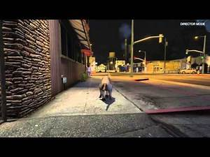 Grand Theft Auto V: Hunting as a Mountain Lion
