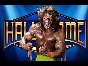 MY 2014 WWE HALL OF FAME CLASS