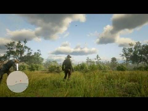 Red Dead Redemption 2 How To Spawn Carolina Parakeet ?