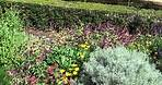 Generalife Gardens (5 of 9)