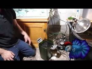 Matrix Aquatics How To Cycle Your Tank in 1 to 3 days Part 1