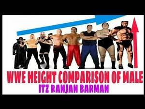 WWE HEIGHT COMPARISON TOP 15 OF MALE