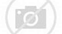 THE SEED OF JUNA | CGI 3D Biopunk Sci-fi Dystopia | OFFICIAL Pilot [4K]