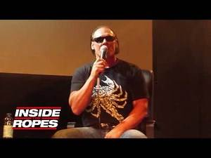 Sting on how he feels about the Triple H match at WrestleMania 31