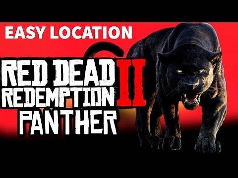 BEST PANTHER Hunting Location in Red Dead Online| RDR2 Online Panther Spawn Location, Farm