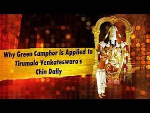 Why Green Camphor applied to Tirumala Venkateswara Swamy daily