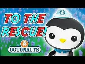 Octonauts - Exciting Expeditions | Sea Creatures in Trouble!