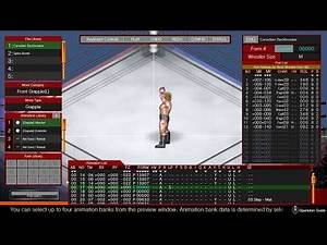 Fire Pro Wrestling World: Move Craft DLC Tutorial Part 3: Form Data - Overview
