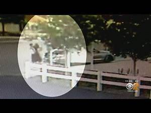 Witnesses, Surveillance Video Shows Girl In Bathing Suit Being Forced Into Car Trunk