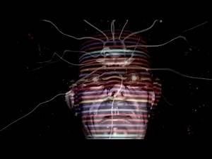 Enzo Kreft - In My Head (Official Video)