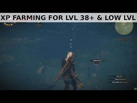 Witcher 3 - XP farming for low lvl and beyond lvl 38