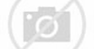 The Miz vs. Dolph Ziggler – Intercontinental Title Match: SummerSlam 2014 (Full Match)