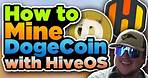 How to Mine Doge Coin with HIVEOS