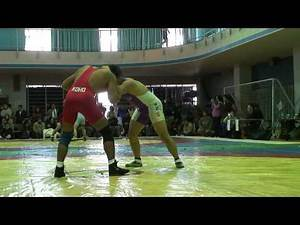 Japanese Freestyle Wrestling - Open Tournament match