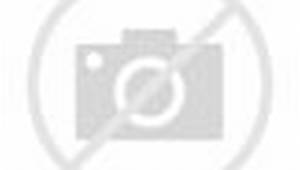 Royal Rumble 2013 - CM Punk vs. The Rock - WWE Championship Match