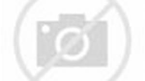 British Bulldog vs. Bret Hart Highlights - HD Summerslam 1992