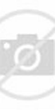 The People Of Panama Are Israelites