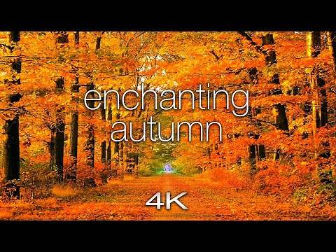 ENCHANTING AUTUMN in 4K UHD - 1 Hour of Amazing Fall Nature Scenes Spa Music by Nature Relaxation