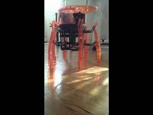 Hexbug Vex Robotic Spider assembled and working!