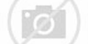 Teenage Mutant Ninja Turtles Episode 19 Baxter's Gambit