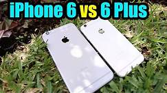 iPhone 6 Plus vs iPhone 6 - Which one is best for you?