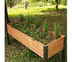 Above ground garden boxes for vegetables Video