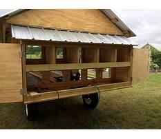 Affordable diy chicken coop Video