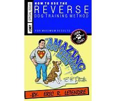 Amazing dog training.aspx Video