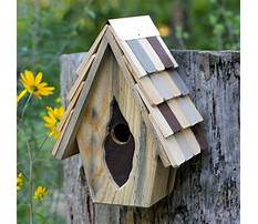 Antique bird house for sale Video