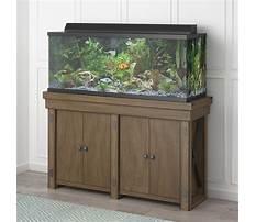 Aquariums and stands.aspx Video