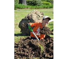 Arbor day craft projects for kids.aspx Video
