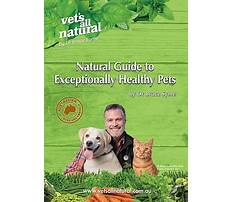 Are guide dogs trained not to bark.aspx Video