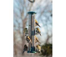Best bird feeders for finches amazon Video