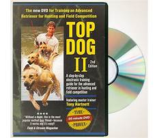 Best dog training dvd Video
