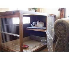 Best indoor rabbit hutch Video