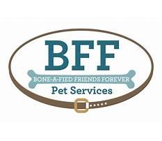 Bff dog training md.aspx Video