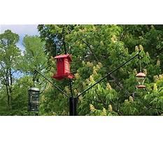 Bird feeder holders homemade Video