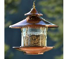 Bird feeders at lowes Video