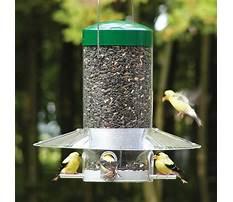 Bird feeders squirrel proof lowes Video