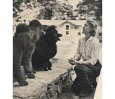 Blanche saunders dog training Video