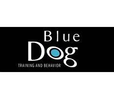 Blue dog training cpr lvr Video
