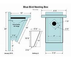 Bluebird house plans for ga Video