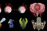 Boss 4 Terraria Music 1 Hour