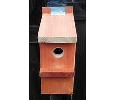 Build a birdhouse plans Video